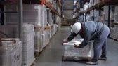 distribuidor : Logistics warehouse. The worker packs pallets with products. 4K Slow Mo Archivo de Video