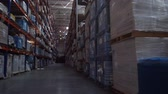 consignation : Panorama between the rows of a huge logistics warehouse. 4K Slow Mo Vidéos Libres De Droits