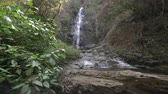 excursionistas : beautiful waterfall in rainforest Archivo de Video