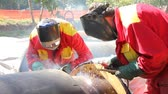 Welders teamwork, Arc welding Vídeos