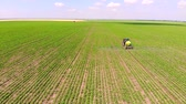 pesticide : Aerial view of crops sprayed with pesticides, Drone shot flying over agricultural field tractor and sprayer, protection from disease in order to increase yield Stock Footage