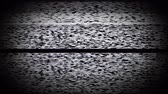 old movies : Static tv noise caused by bad signal reception, black and white. Stock Footage