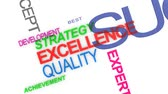 Word cloud about excellence in business service Stok Video