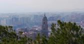 malagueta : malaga sunny day famous cathedral pine view 4k spain Stock Footage