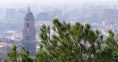 malagueta : malaga sun light day famous cathedral pine view 4k spain