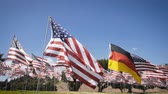 política : slow motion waving german flag in between american flags. diplomatic concept