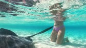 szmaragd : woman at exuma island with stingrays in the water Wideo