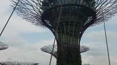 flora : SINGAPORE - May 7, 2017: Gardens by the Bay park with the sky walk among its famous sculptural supertrees.