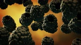 amoras : Blackberries with water droplets falling down in front of blurry background. Slow motion CG animation. Vídeos