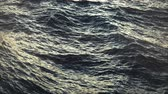 02043 Rippling Water Of An Ocean Wideo