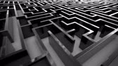 rehber : Loopable animation of complex maze.