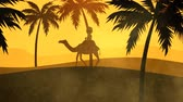 wydmy : Silhouette Of A Tourist Travelling On Camel In Sandstorm Wideo