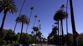 veneza : Street view with palm trees in Beverly Hills LOS ANGELES Stock Footage