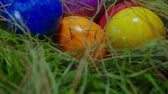 konijntje : Over een nest glijden met Easter Eggs - close-up shot