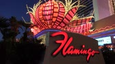 ace : The amazing neon lights at Flamingo Hotel and Casino in Las Vegas - USA 2017 Stock Footage