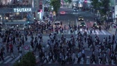 буддист : Hundreds of people crossing the street in Tokyo Shibuya - TOKYO  JAPAN - JUNE 12, 2018 Стоковые видеозаписи