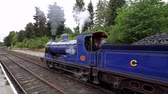 треккинг : Scottish Railway - the famous Speyside Steam train Стоковые видеозаписи