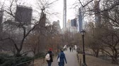 táxi : Walking through Central Park New York