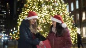 puente de manhattan : Two girls in front of a Christmas tree enjoy the wonderful time in New York Archivo de Video