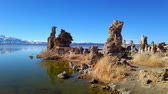 basalto : Mono Lake California with its Tufa columns - travel photography