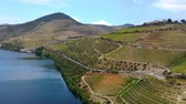 colheita : Amazing landscape in Portugal - Douro valley and River Douro Vídeos