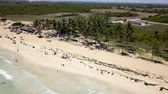 Aerial view of Macao beach and promenade with palm trees and people lying on the beach. Dominican republic