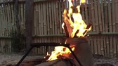 яма : Flames rising up from burning pile of sticks with smoke. Slow motion Стоковые видеозаписи