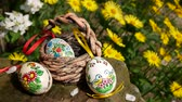 casca de ovo : Painted Easter eggs with yellow flowers in the garden Vídeos