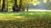 senhor : Pair of young people walking in the autumn park. Mr.