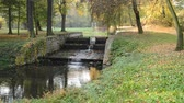 kuru : River bed with weir in the autumn. No camera motion. Stok Video