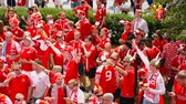 danimarka : MOSCOW - JUNE 20, 2018: Soccer World Cup Fanatics of Denmark with flags with their typical costumes in the streets June 20, 2018 in Moscow, Russia