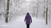 Woman wearing winter jacket and hood walking away from camera into beautiful winter forest covered with white fresh snow on bright sunny day. Vídeos
