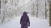 Woman in winter jacket with hood walking away from camera in winter forest covered with snow on bright sunny day.