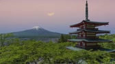 immortal : Japanese temple and Mount Fuji view