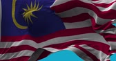 National Flag of  Malaysia waving in the wind slow motion Seamless Loop Animation Stok Video