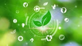 environment icons over the Network connection on nature background, Technology ecology concept. Hand holding and protection with environment icons over the Network connection on nature background Dostupné videozáznamy