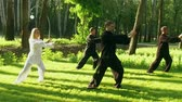 quimono : Training in the park. Workout. Group of four people practicing the elements of qigong. Slow motion. HD Vídeos