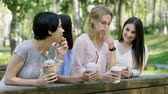 quatro pessoas : A group of friends drinking soft drinks and talking in the summer park. 4K