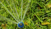 irrigação : Close-up of a nozzle for spraying water by automatic watering system for lawn with lush green grass in sunny day. Slow motion. HD