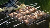 open fire : Pork barbecue strung on skewers roasted on the grill. 4K Stock Footage