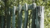 weathered : The russian countryside. Old unpainted wooden fence. 4K