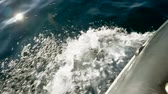 křižník : Water splashing on sea surface in slow motion. HD Dostupné videozáznamy