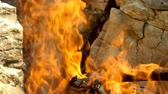 Campfire. Open fire with firewood made outdoors by people who are camping. Greece. Slow motion. HD Dostupné videozáznamy