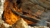 queimado : Campfire. Open fire with firewood made outdoors by people who are camping. Greece. Slow motion. HD Vídeos