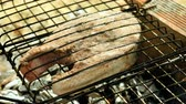 pescador : Close-up shot of delicious grilled tuna fish on barbeque grill. 4K Stock Footage