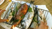 poleiro : Woman preparing fresh fish. Womens hands marinating mackerel, perch, sea bass, dorado, mullet, tuna for grilling. 4K Stock Footage
