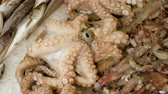 crustacean : Fresh seafood. Close-up shot of sea fish, squids, octopuses lying on ice on the street market. Greece. 4K