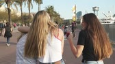 eğlenceli : Back view of best friends walking together Stok Video