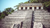 kalıntılar : Temple of the Inscriptions in Chiapas, Mexico Stok Video