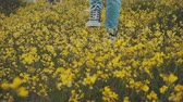 brim : Person walking in a flower field Stock Footage